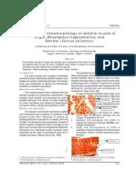 Comparative histomorphology of skeletal muscle of Nilgai (Boselaphus tragocamellus) and Sambar (Cervus unicolour)