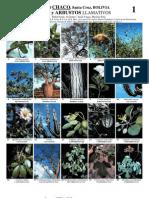 Arboles y Arbustos Del Chaco - Bolivia