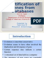 Identification of Gene From Databases