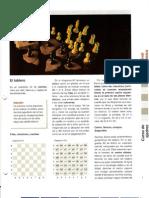 La pasión del ajedrez.[Enciclopedia][Curso Nivel Basico]