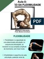 Aula 8 - Avaliação da Flexibilidade