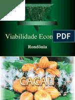 Viabilidade Econômica do Cacau
