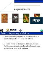 Aspectos agronómicos.ppt