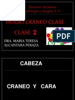 02 Craneo