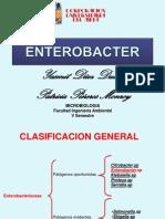 ENTEROBACTER.SP1