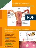 PARTE II Aparato Reproductor Femenino