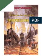 Sistemul Transporturilor VolI Tr Feroviare