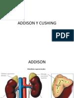 Addison y Cushing