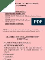 Clasificacion de La Obstruccion Intestinal