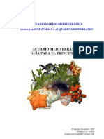 guida del principiante - espanol.pdf