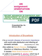 Brucellosis - Dr.dhiren Bhoi