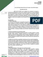 Evaluación de plaguicidas en la cuenca del Parque nacional Esteros de Farrapos e islas del Río Uruguay.