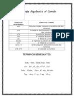 lenguaje común y algebraico