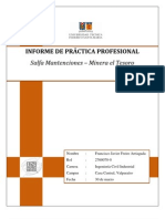 Informe de Práctica Profesional - FFA 2012