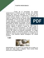 marco teorico-plantas medicinales.doc