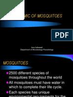 BIONOMIC Mosquitoes11