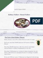 Kidney, Safety Advice