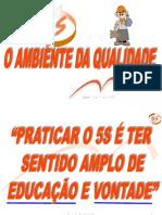 Programa Da Qualidade 5s