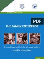 Guidelines Family Enterprise