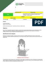 manual de funcionamiento sierra sin fin.pdf