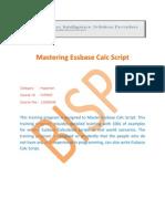 Mastering Essbase Calc Scriptnew