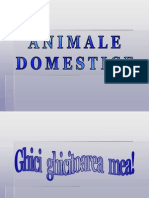 animale_domestice.pps
