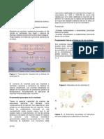 microbiologia_3
