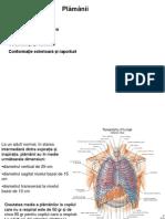 plamani- anatomie si fiziologie