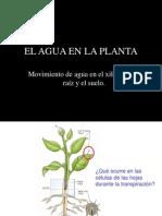 Agua Enel Suelo(3)