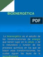 BIOENERGETICA.10