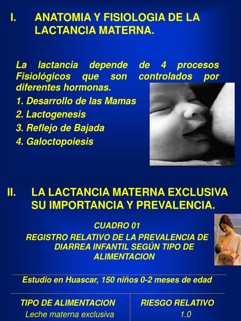 anatomia y fisiologia lact.materna.ppt
