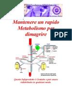 123652558 Corsa e Metabolismo