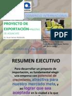 PROYECTO DE EXPORTACIÓN-PALETAS DE AGUACATE