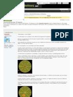 Tutorial de File Recovery - PC Inspector