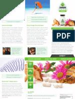 ShroomTECHImmune Brochure
