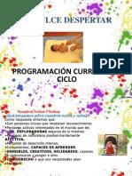 PROGRAMACION CURRICULAR I CICLO bien - copia.ppt