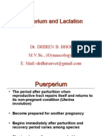 Puerperium and Lactation-By:Dr.DHIREN BHOI