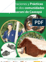 Representaciones y Practicas de Salud Indigena en dos comunidades Mbya Guarani de Caazapá.