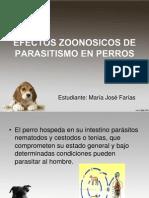 PARASITISMO DE MASCOTAS.pptx