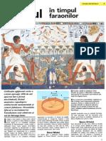 123337516 Egiptul in Timpul Faraonilor PDF