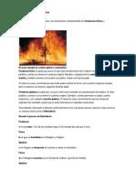 Cambios químicos en la materia.docx