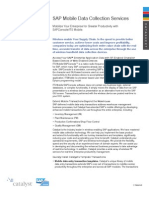 SAP Mobile Data Collection Services.pdf