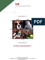 Brand Leadership Matrix