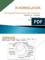Allergen Nomenclature Hongos Ascomycota,Basidiomycota