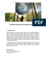 ong-na-amazonia.pdf