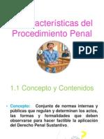 CARACTERÍSTICAS DEL PROCEDIMIENTO PENAL