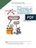 TEMA 23. LA ORGANIZACIÓN DEL SISTEMA de orientacion EN ESPAÑA