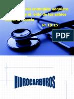 HIDROCARBUROS_2011