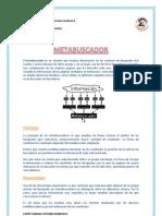 7.METABUSCADORES