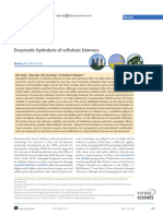 Enzymatic Hydrolysis of Cellulosic Biomass